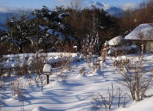 snow140209-2