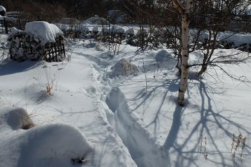 snow140209-3