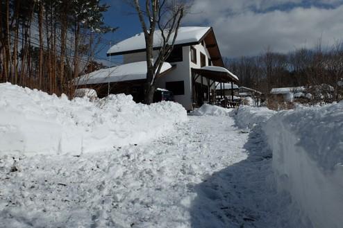 snow140209-5