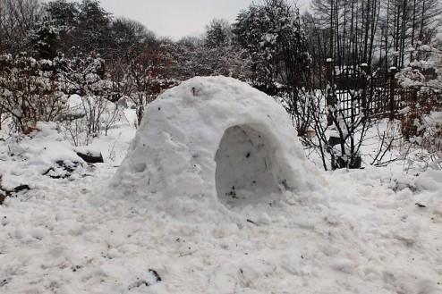 snow1229-3